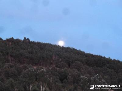 Vespertina - Senderismo Sierra del Rincón;parque natural murcia cabrera madrid puente del pilar via